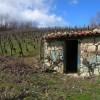 voyage en Auvergne et dans le Sauternais (1ère partie)