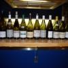 Grands vins blancs de la Côte de Nuits