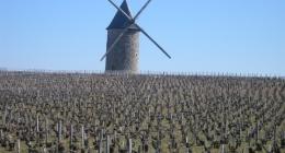 voyage en Auvergne et dans le Sauternais (2ème partie)