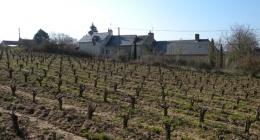 Voyage en Loire (2ème partie)