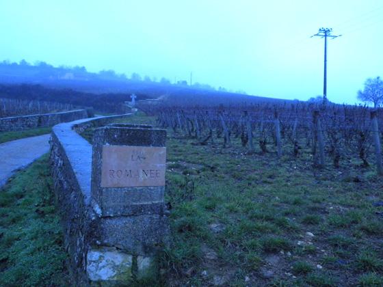Les vignes de la Romanée-Conti