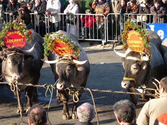 carnaval du boeuf gras 2