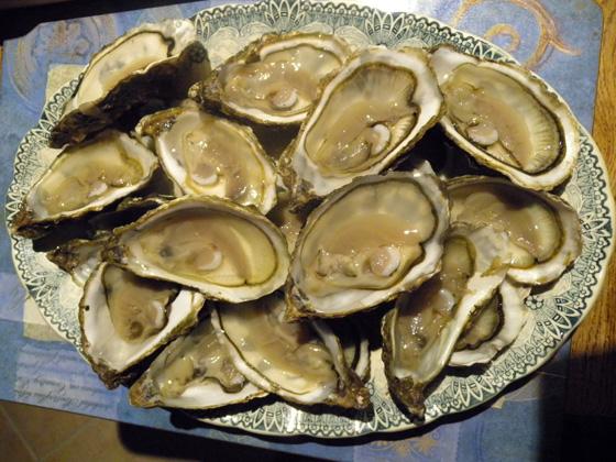 huîtres no 2 du bassin d'Arcachon